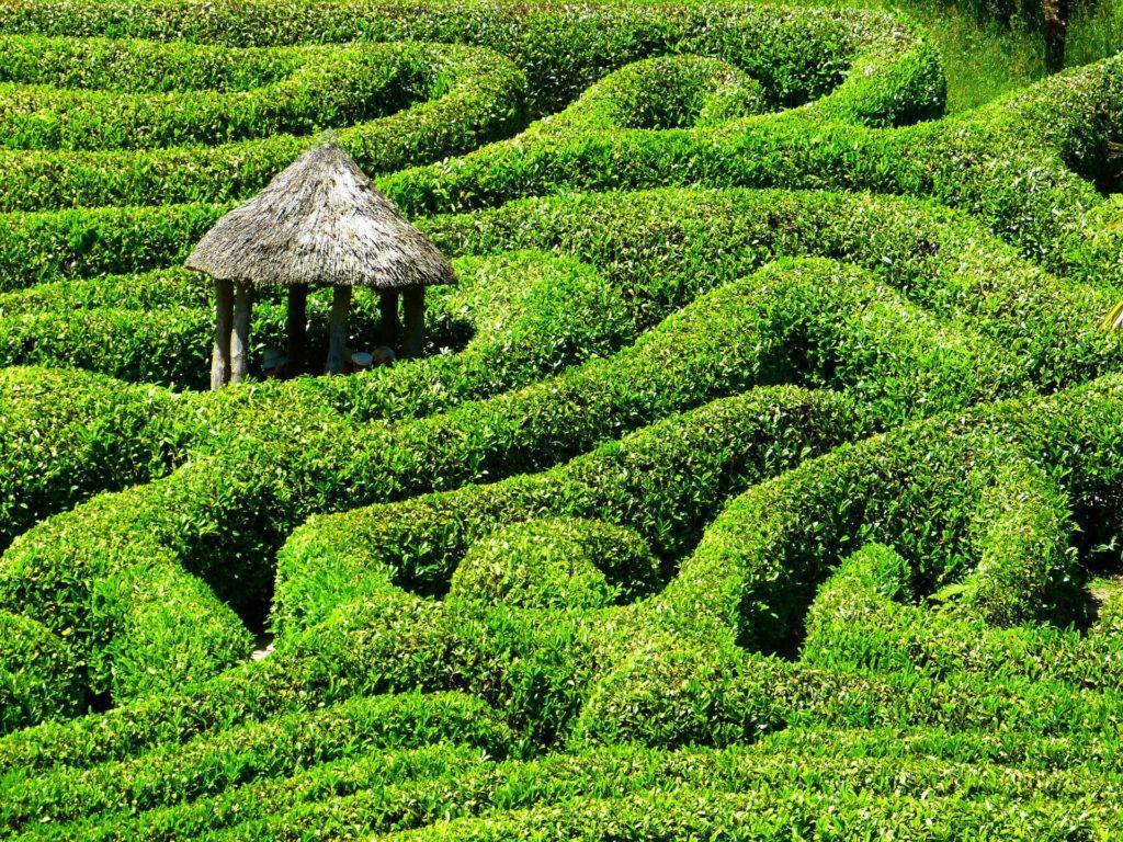 Hütte im Labyrinth